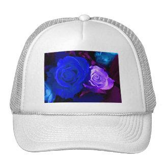 Blaue lila Rose Kult Kappen