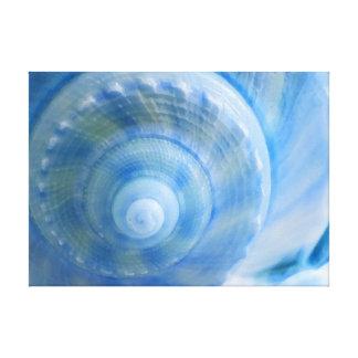Blaue Muschel-abstrakter Leinwanddruck