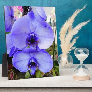 Blaue Orchideen Fotoplatte