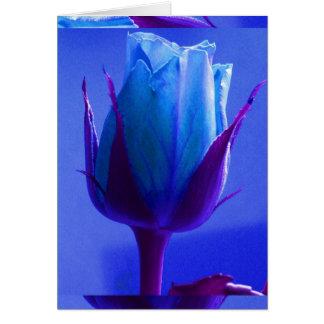 Blaue Rosen-Freuden-Karte I - kundengerecht Grußkarte