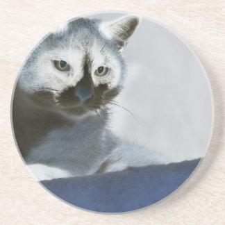 Blaue Schnee-Schuh-Katze auf dem Prowl Getränkeuntersetzer