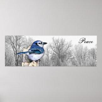 Blauer Jay-Waldfrieden Poster