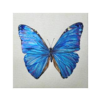 Blauer Morpho Schmetterling Leinwanddruck