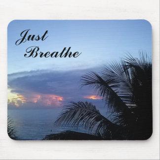 Blauer ruhiger Palme-Ozean-Sonnenaufgang Mousepad