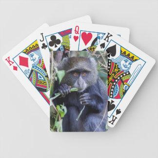 Blaues Affe-Essen Bicycle Spielkarten