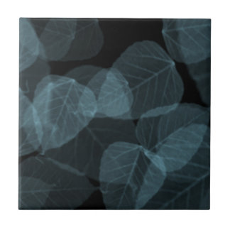 Blaues Blatt X-Ray.png Kleine Quadratische Fliese