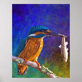 Blaues Eisvogelplakat Poster