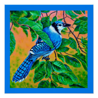 Blaues Jay-Plakat Poster