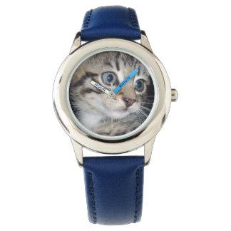 Blaues mit Augen graues flaumiges Kätzchen, Uhr
