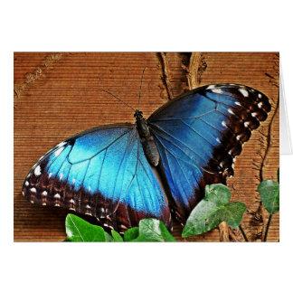 Blaues Morpho - Schmetterling Karte