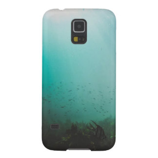 blaues Unterwassermeer Samsung S5 Cover