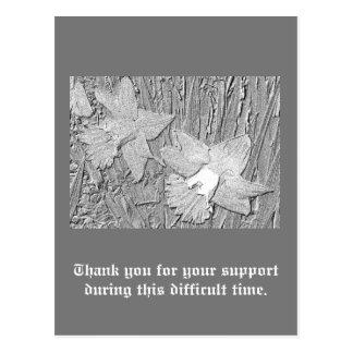 Bleistift-Narzissen-Dank für Ihre Unterstützung Postkarte