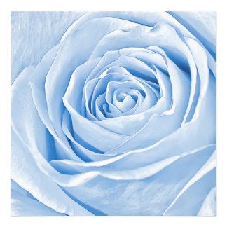 Bleu-clair savoureux de photo florale s'est levé