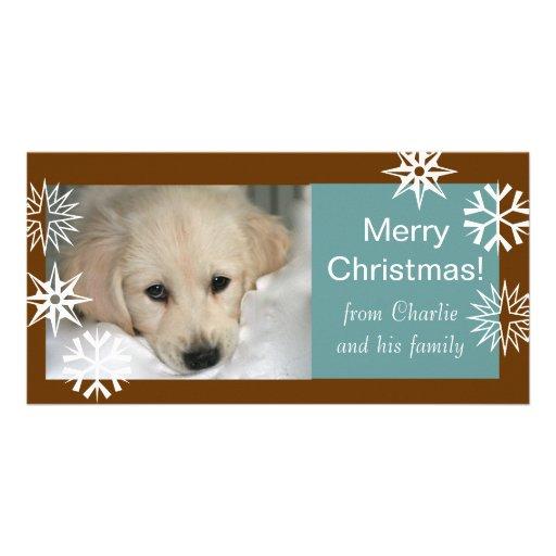 Bleu de Brown de cartes photos de Noël de chien de Photocartes Personnalisées