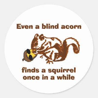 Blindes Eichhörnchen Runder Aufkleber