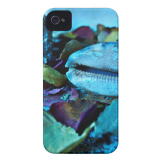 Blue Maritime Symphony of Seashell iPhone 4 Case-Mate Hülle
