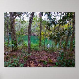 Blue- SpringsStaats-Park, Florida Poster
