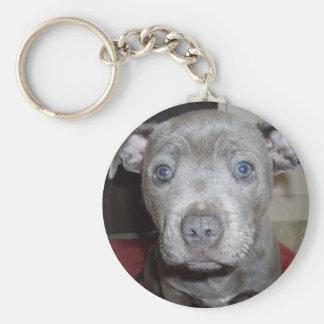 Blue_Staffordshire_Bull_Terrier, _Puppy, Schlüsselanhänger
