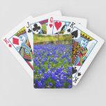 Bluebonnets dans des vos mains jeux de cartes