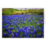 Bluebonnets de Texas Carte De Correspondance