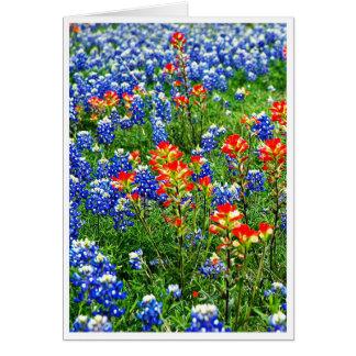 Bluebonnets, Texas Grußkarte