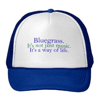 Bluegrass: Nicht gerade Musik, eine Lebensart Retrokultmützen