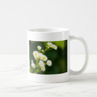 Blühen wild im Wind Kaffeetasse