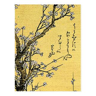 Blühende Pflaume Postkarte