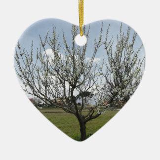 Blühender Birnenbaum im Garten Toskana, Italien Keramik Herz-Ornament