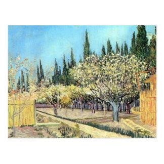 Blühender Fruchtgarten durch Vincent van Gogh Postkarte