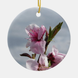 Blühender Pfirsichbaum gegen den bewölkten Himmel Keramik Ornament