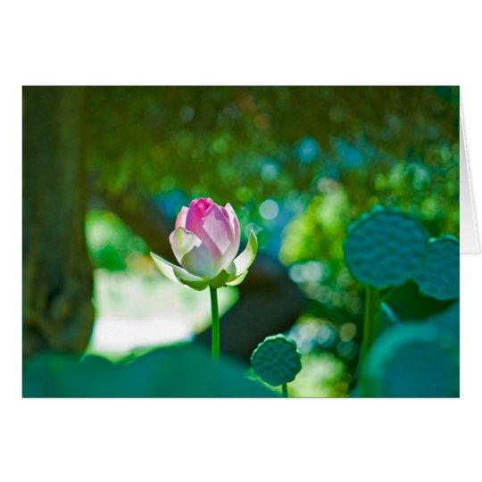 Blume #0428 karte
