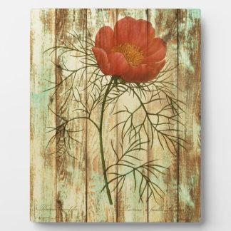 Blume der hölzernen Mohnblume der Shabby Fotoplatte