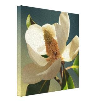 Blume der südlichen Magnolie, romantisch Leinwanddruck