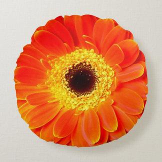 Blume des orange Gänseblümchens rundes Throwkissen Rundes Kissen