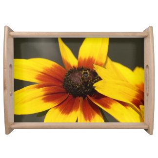 Blume, dienender Behälter Tabletts
