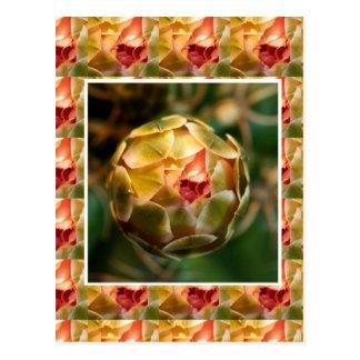Blume KNOSPE: Eleganter Diamant-Rubin wie BLICK Postkarte