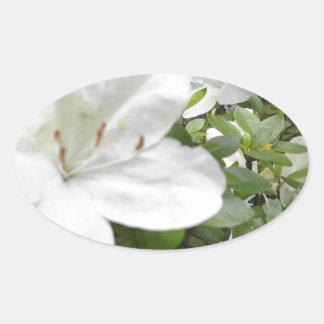 Blume Ovaler Aufkleber