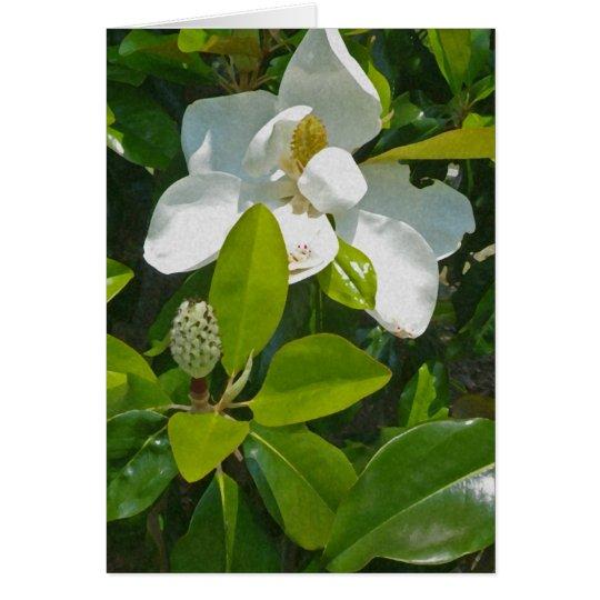 Blume zum Früchte zu tragen Mitteilungskarte