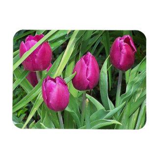 Blumen-Blumengarten-Blüten Magnet