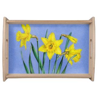 Blumen der feinen Kunst der Narzissen blau und Tablett