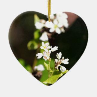 Blumen einer Buchweizen-Pflanze (Fagopyrum essbar Keramik Herz-Ornament