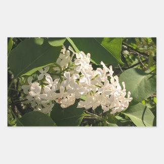 Blumen-Foto mit schönem weißem lila Aufkleber