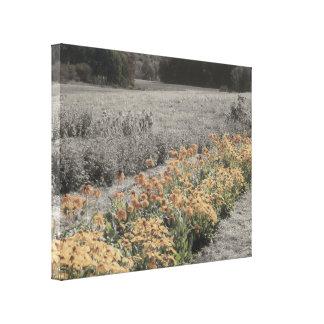 Blumen-Garten in Schwarzweiss Leinwanddruck