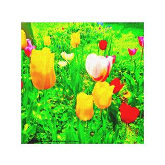 Blumen-Garten-Tulpen Leinwanddruck