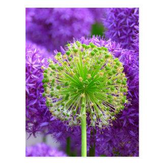 Blumen-Gussnaht Postkarte