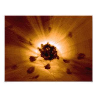 Blumen-Power Fotografischer Druck