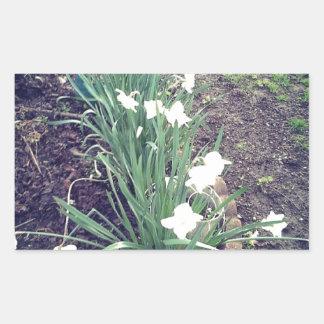 Blumen Rechteckiger Aufkleber