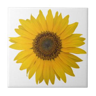 Blumen-Sonnenblume - offene gelbe Blüte Fliese