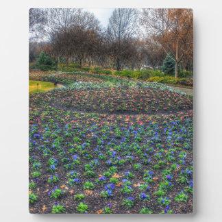 Blumenbett Dallas-Arboretums und der botanischen Fotoplatte